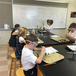 2nd Graders Dissecting Owl Pellets